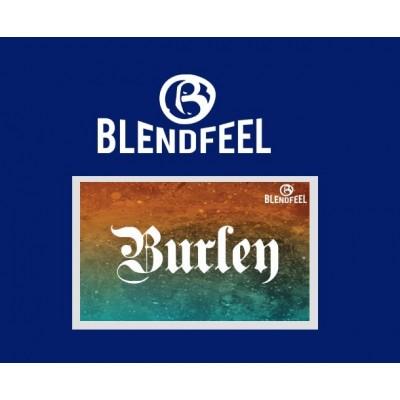 Liquido Burley 10ML